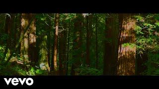 slenderbodies - dewdrops (Lyric Video)
