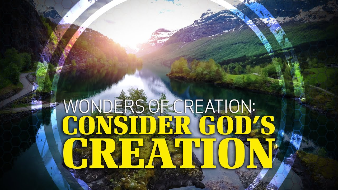 Wonders of Creation: Consider God's Creation - YouTube