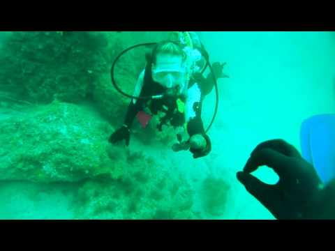 SCUBA Dive on Jetties-St Andrews SP-PCB