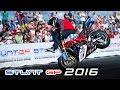 Martin Kratky StuntGP 2016