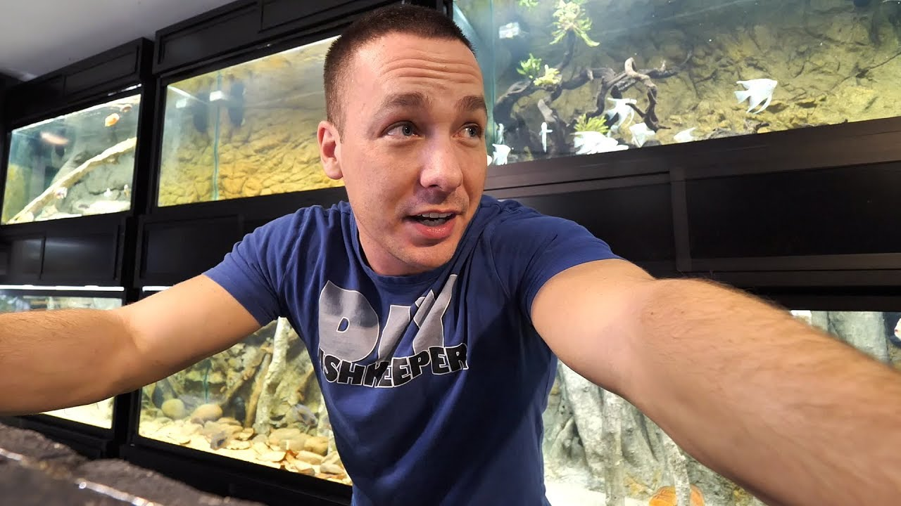my-water-froze-but-aquariums-and-fish-are-ok