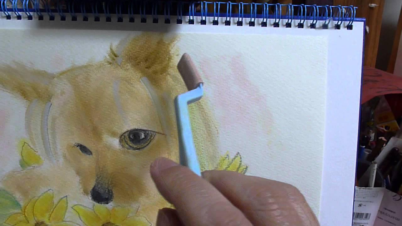 パンパステルで犬の絵 ヨークシャーテリアチワワのもなか Youtube