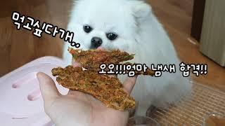 건조기로 강아지 수제간식만들기! '치킨야채스틱&…