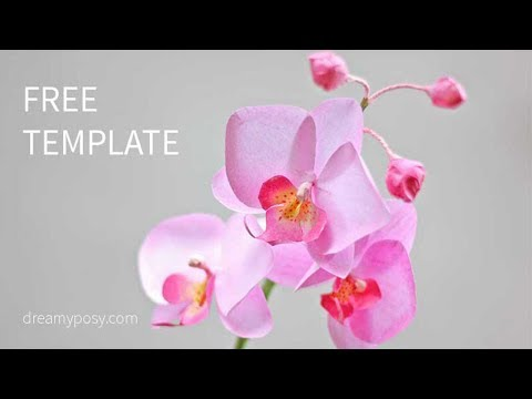 [FREE template] How to make paper orchid flower from printer paper
