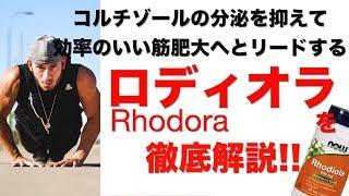 【ロディオラ】コルチゾールを抑えて効率のいい筋肥大には欠かせないサプリメント!!