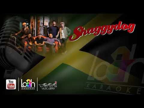 SHAGGYDOG(sayidan Karaoke)