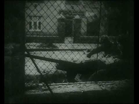 WW2 urban combat footage