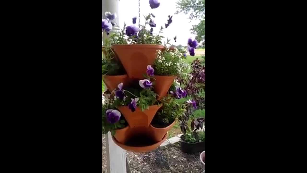 Three Tiered Hanging Planter With Pansies Youtube