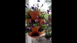 Three Tiered Hanging Planter With Pansies