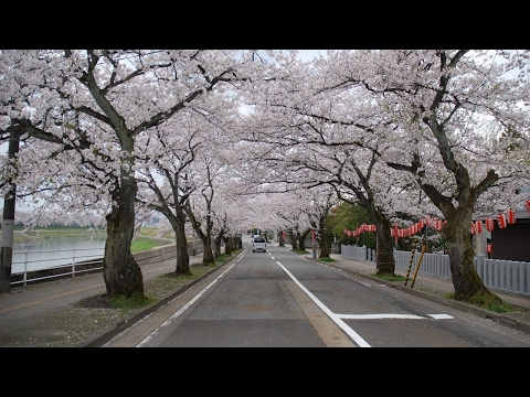 HOT NEWS Tsuruga 2017 Best Of Tsuruga Japan Tourism