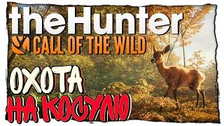ПРОФЕССИОНАЛЬНАЯ ОХОТА НА КОСУЛЮ ОТ ВИОЛЕНТА - The Hunter Call of the Wild