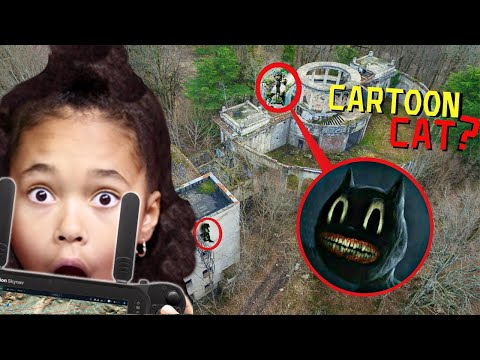 Notre DRONE trouve CARTOON CAT et CARTOON DOG * ils existent !! *