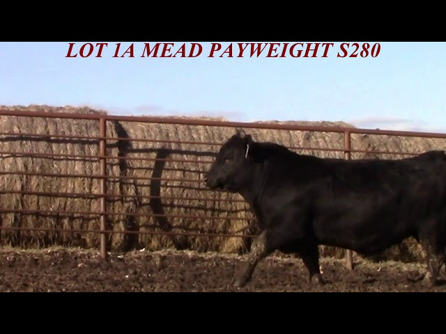 Mead Farms Lot 1A