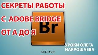 Adobe Bridge Урок 4 Выбираем нужные панели