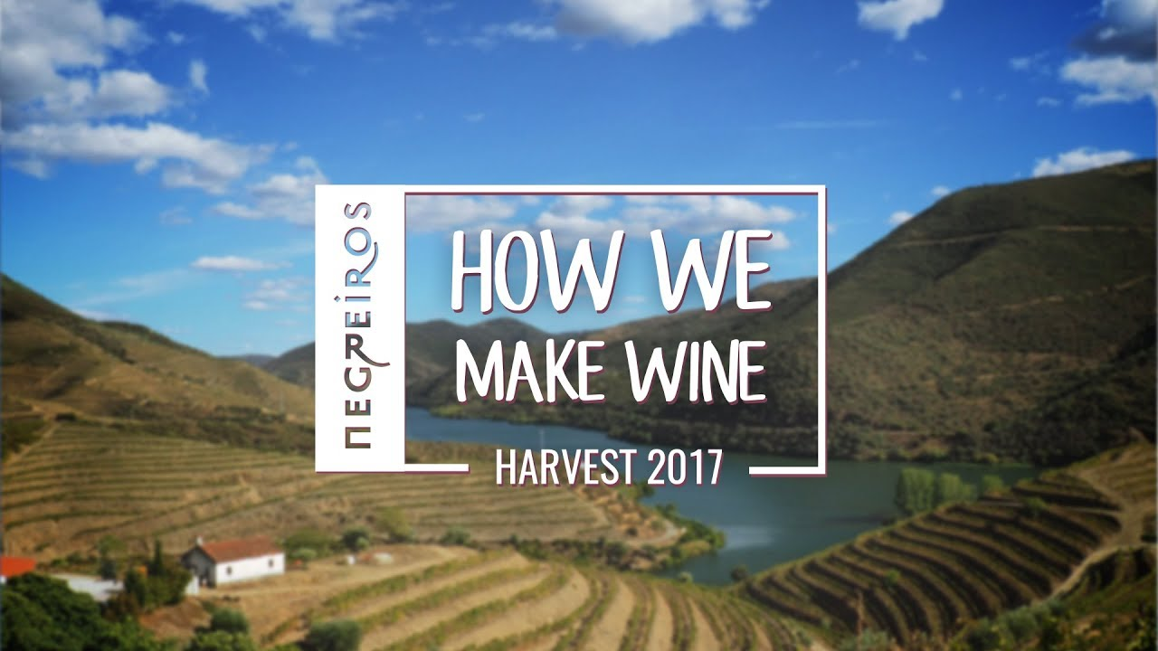 Negreiros - How We Make Wine -  Harvest 2017