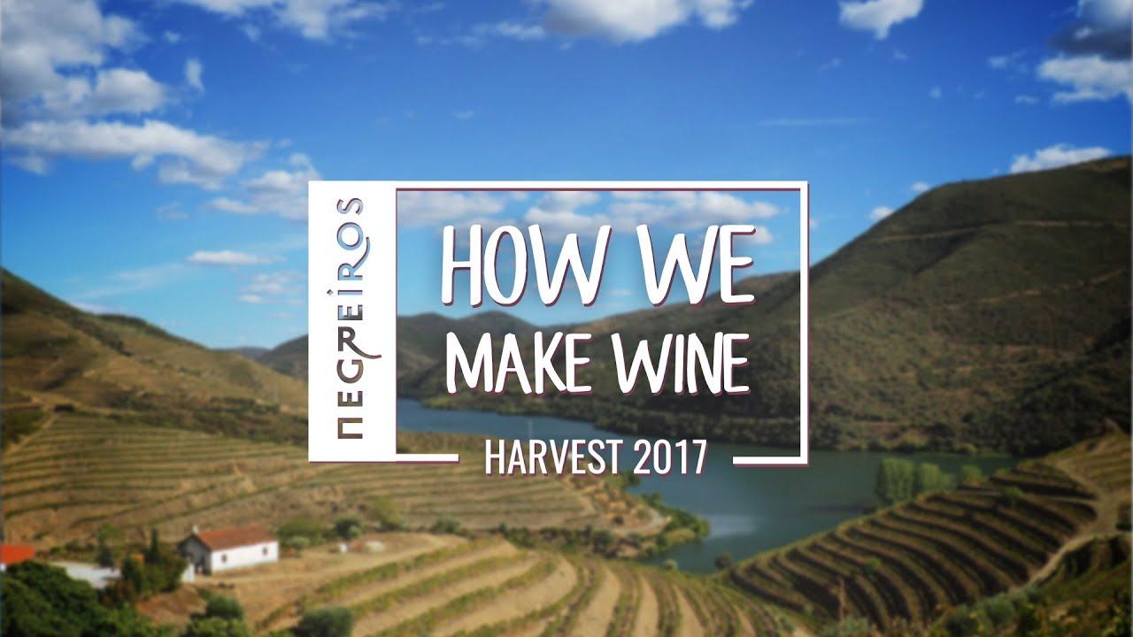 Negreiros - How We Make Wine -  Harvest 2017