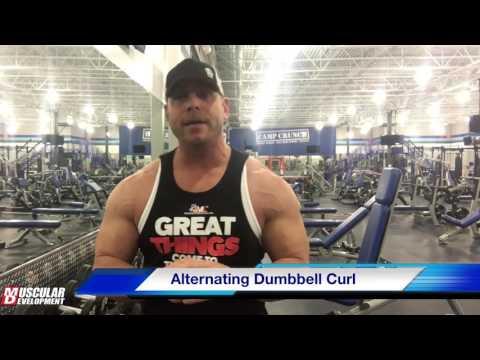 MD Training 101 - Biceps