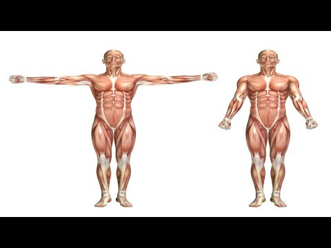 How to Lose Weight and Gain Muscle at Home – Burn Fat and Gain Muscle