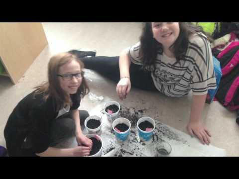 Royal Canadian Geographical Society Classroom Energy Diet Challenge