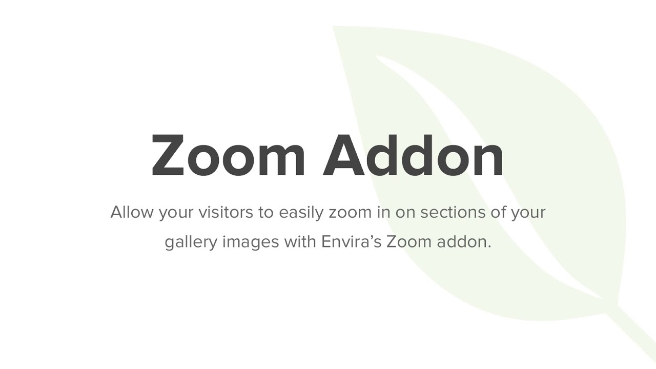 Photo Gallery Zoom for WordPress - Envira Gallery