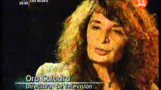 TV o no TV (2008) - La televisión chilena a comienzos de los 80s