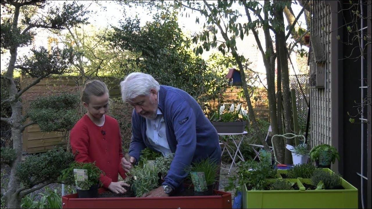 Comment créer un jardin d\'herbes aromatiques ? - Jardinerie Truffaut TV