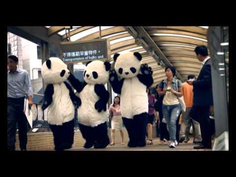 Chengdu Pambassador Video Case