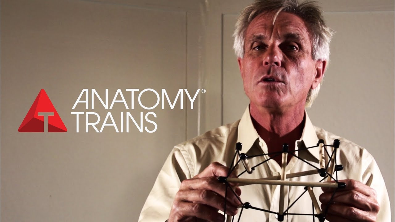 Anatomy Trains Tom Myers Full Interview Youtube