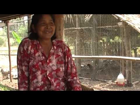 Člověk v tísni rozdával slepice kambodžským rodinám