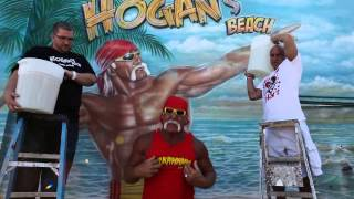 could hulk hogan have been a body builder