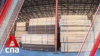 US exports of hardwood to China plummet amid trade war