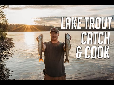 Lake Temagami Lake Trout Fishing - Catch & Cook, Camp Poutine, And A New Honda 30!