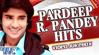 "प्रदीप आर पाण्डेय '' चिंटू '' || Pradeep R. Pandey ""Chintu"" || Video JukeBOX || Bhojpuri Hot Songs"
