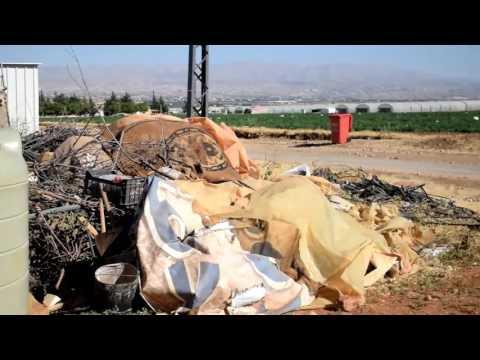 My vlog:Bekaa valley