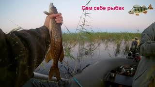 рыбалка на озере Воже да этой щуке пофиг на крючок