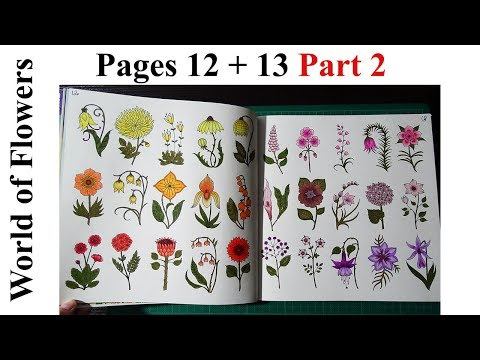 world-of-flowers-by-johanna-basford-/-pages-12-to-13-part-2