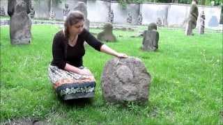 Сокровища Днепропетровского Национального исторического музея - Отпечатки на камнях