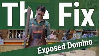 Exposed Domino (or other major defect) - The Fix with Jory Brigham