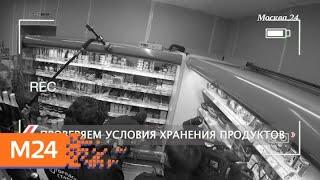 """""""Городской стандарт"""": плесень - Москва 24"""
