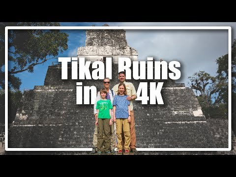 guatemala:-tikal-temple-4-sunrise-tour-in-4k-ancient-mayan-ruins-in-jungle-of-central-america