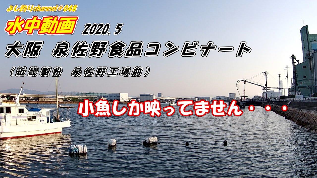コンビナート 釣果 食品 泉佐野