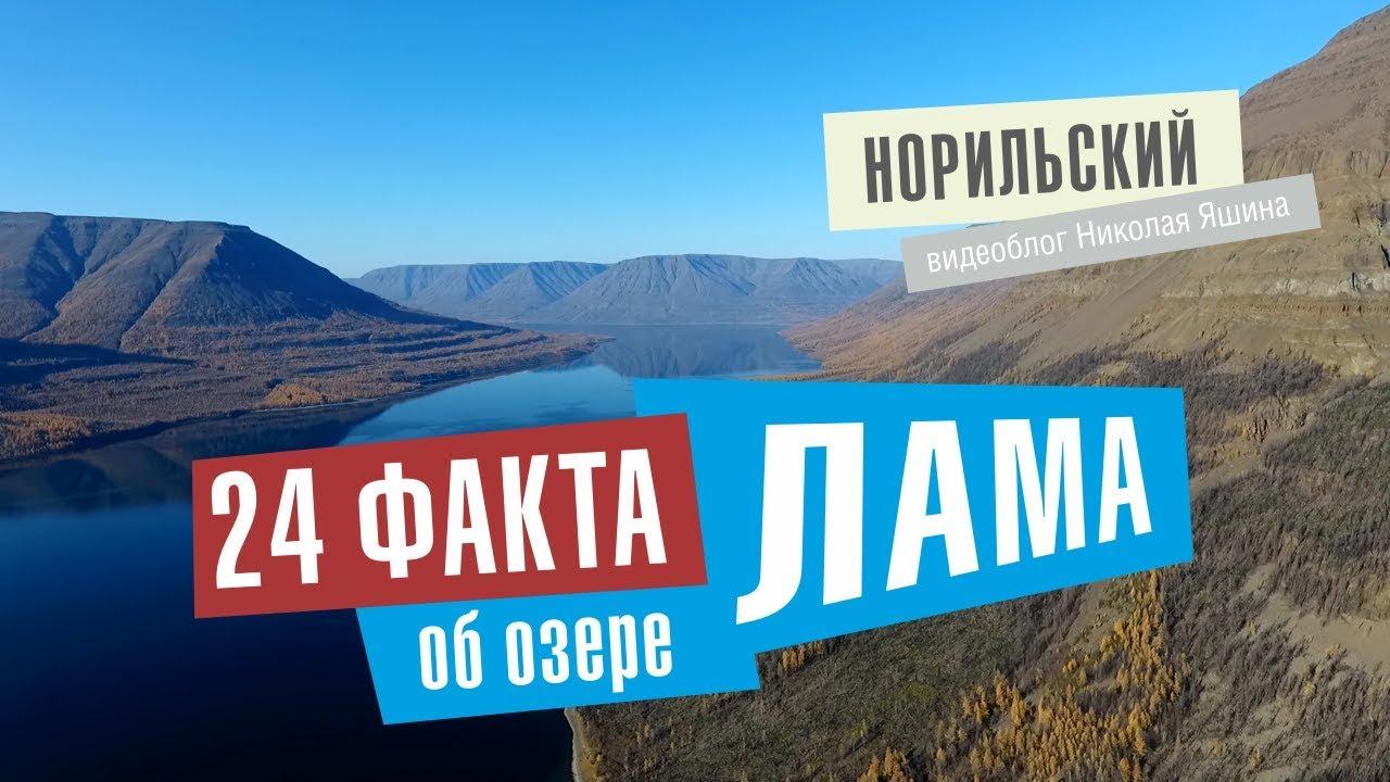 Норильский видеоблог. 24 факта про озеро Лама