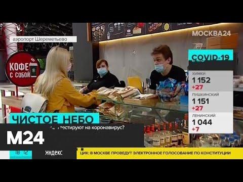 В столичных аэропортах начали тестировать на COVID-19 - Москва 24