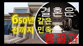 한국인은 650년전 이별 되었던 몽골민족과 결혼 하자