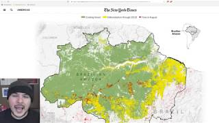 The Amazon Forest Fires Are FAKE NEWS, This Is NORMAL, Its Still Bad But Happens Every Year
