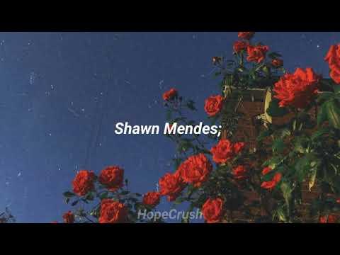 Shawn Mendes - Crazy; Sub Español. HopeCrush