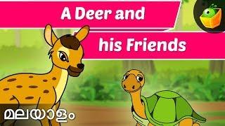 dear wood pecker and tortoise jataka tales in malayalam animation cartoon stories for kids