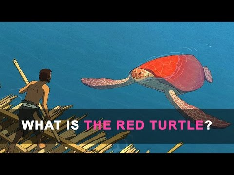 The Red Turtle Explained Analysed Spoilers Youtube