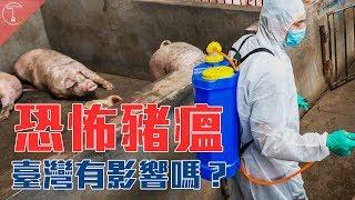 中國恐怖豬瘟大爆發 台灣會受到影響嗎?|克里斯丁聊料理