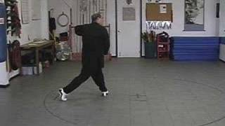 Yang style Tai Chi short form wild horse parting the mane